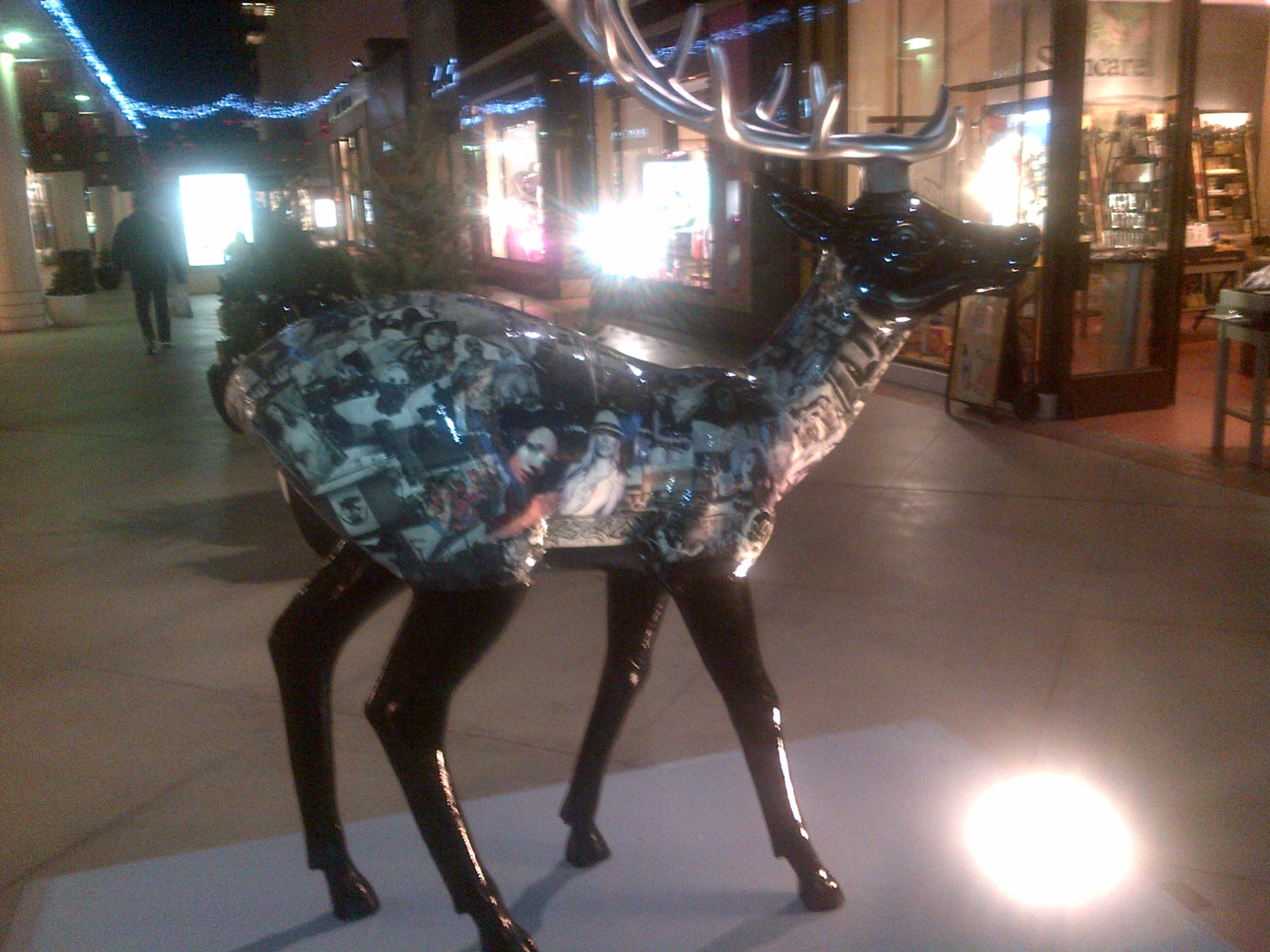 Wildlife in Century City, Westfield Mall, Endre Barath