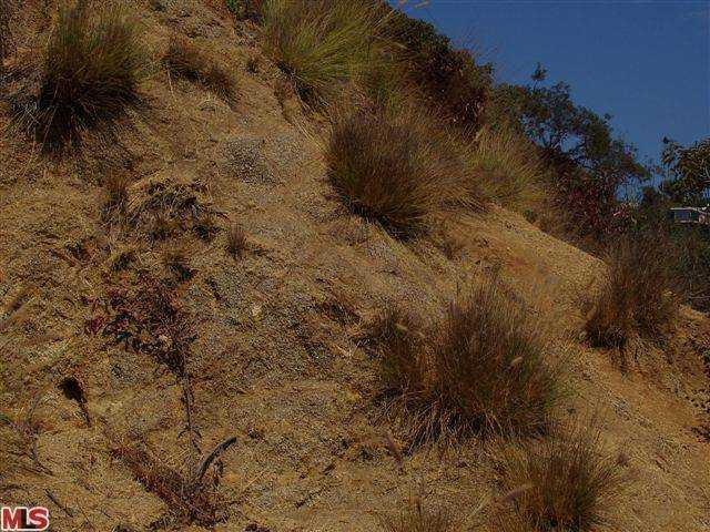 View Lot in the Hollywood Hills, Endre Barath, Land Specialist