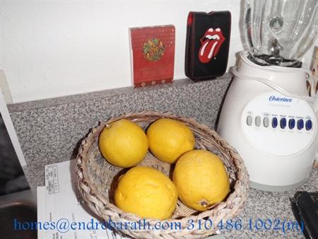 endre barath, luxury homes in west los angeles, lemons