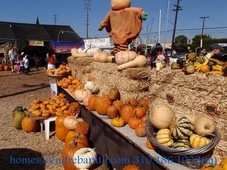 Pumpkin Patch Culver City,CA Endre Barath Los Angeles Realtor