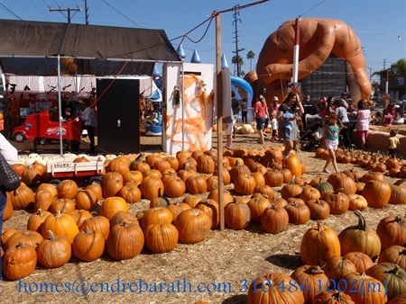 Shawn'spumpkin patch, culver city realtor Endre Barath