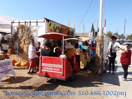 the best pumpkin patch in Los Angeles, Endre Barath los angeles Realtor