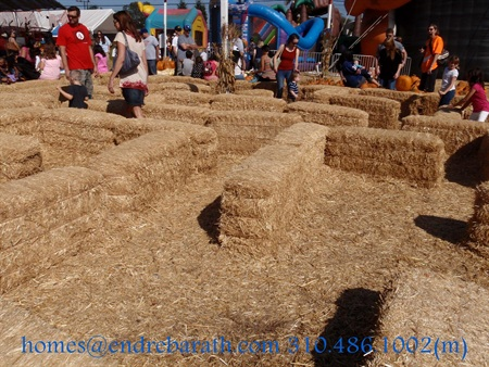 hay maze at the pumpkin patch Marina Del Rey Realtor Endre Barath