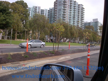 Marina Del Rey Realtor Endre Barath, Replacement trees in MDR