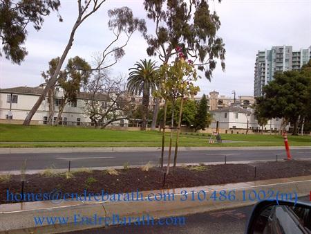Marina Del Rey Replacement Trees, Endre Barath Marina Del Rey Realtor