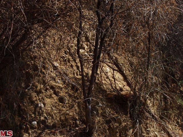 hollywood hills vacant land endre barath