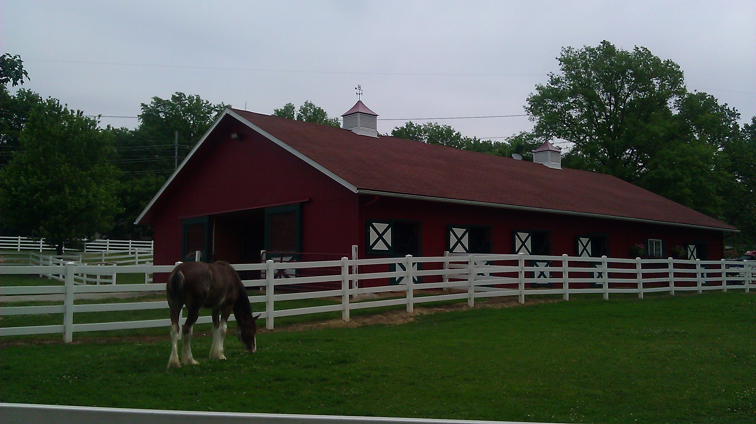 A Visit to Grant s Farm St Louis MO Anheuser Busch