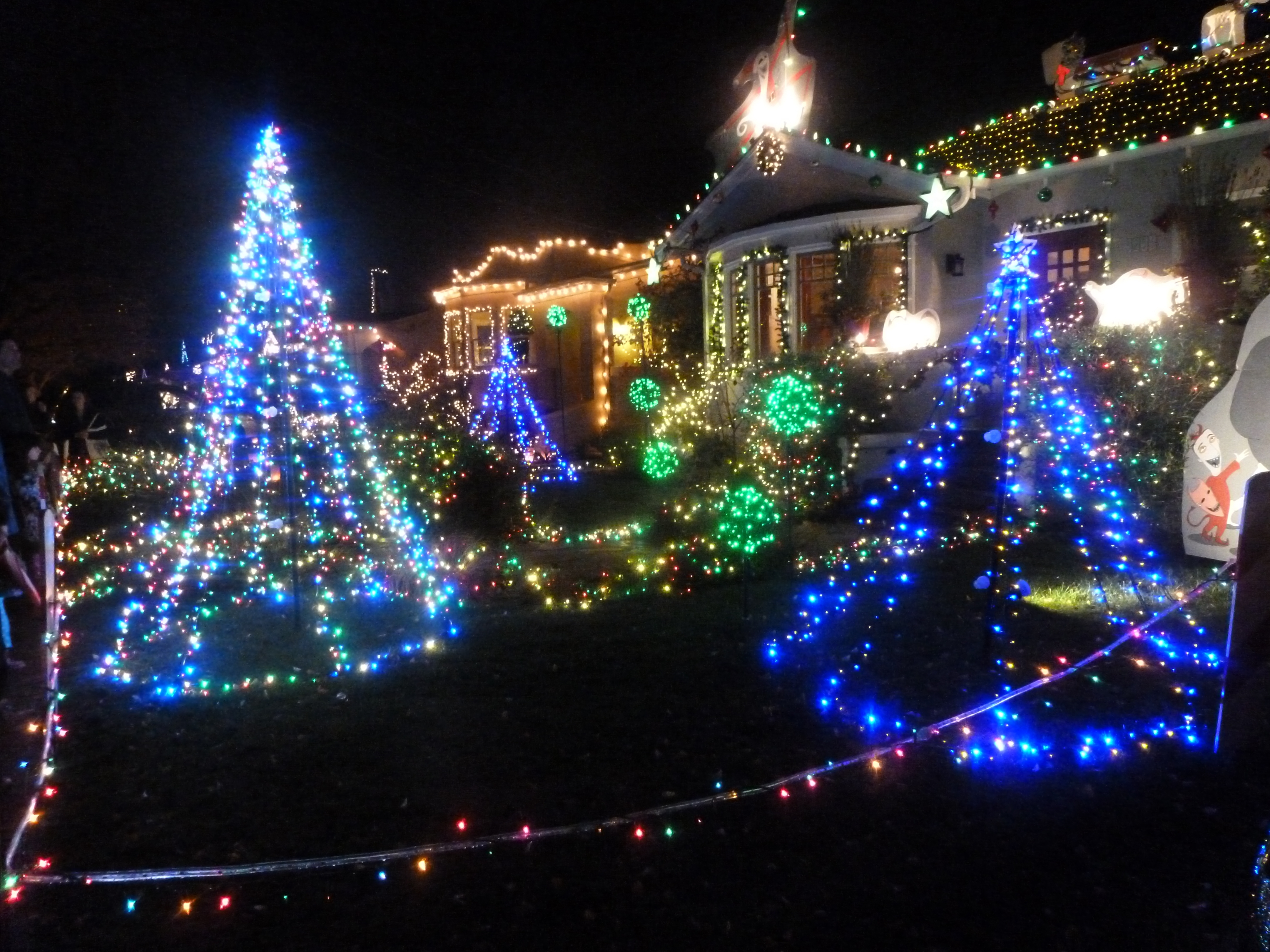 Christmas tree lane in alameda photo by evelyn kennedy