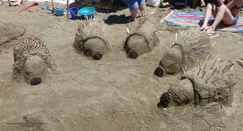 alameda sand castle contest hedgehogs photo by evelyn kennedy