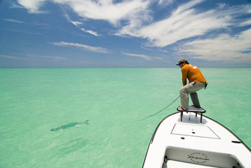Fly fishing near bradenton fl for Florida commercial fishing license