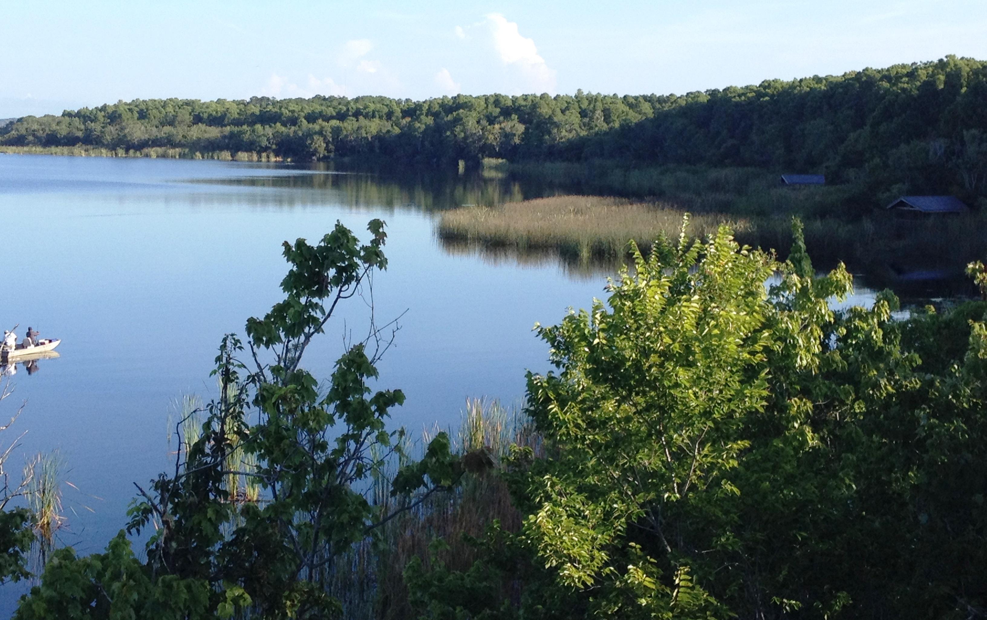 Morning View Of Lake Tarpon Palm Harbor Florida