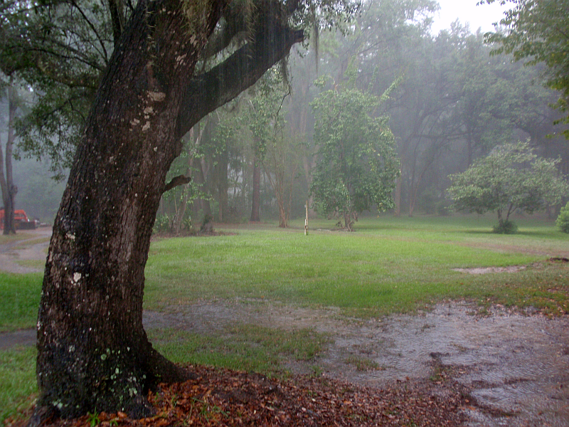 Summer Rain Shower in Tallahassee! A Welcome Thunderstorm Passes Over