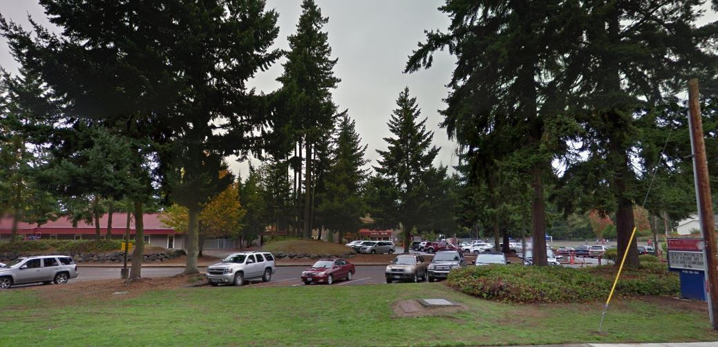 Homes Near Picnic Point Elementary School in WA