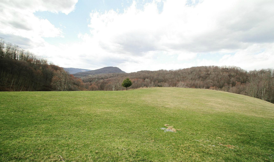 SOLD 5BR,3.5BA log home with 138 acres, Valley Head WV