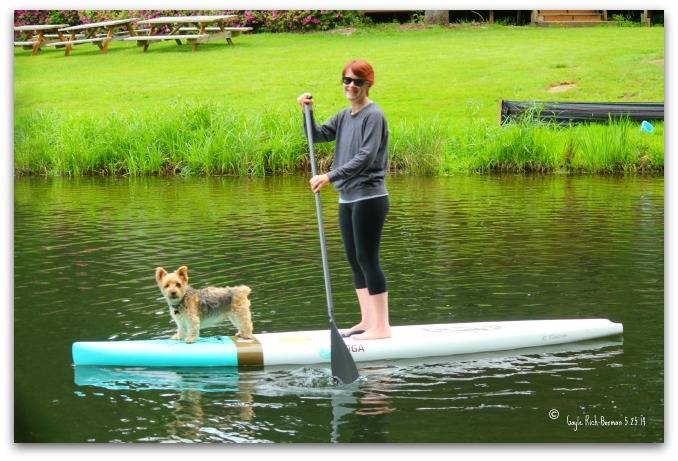 Paddleboarder with dog on Fishawk Lake-Gayle Rich-Boxman Copyrighted All Rights Reserved 2013