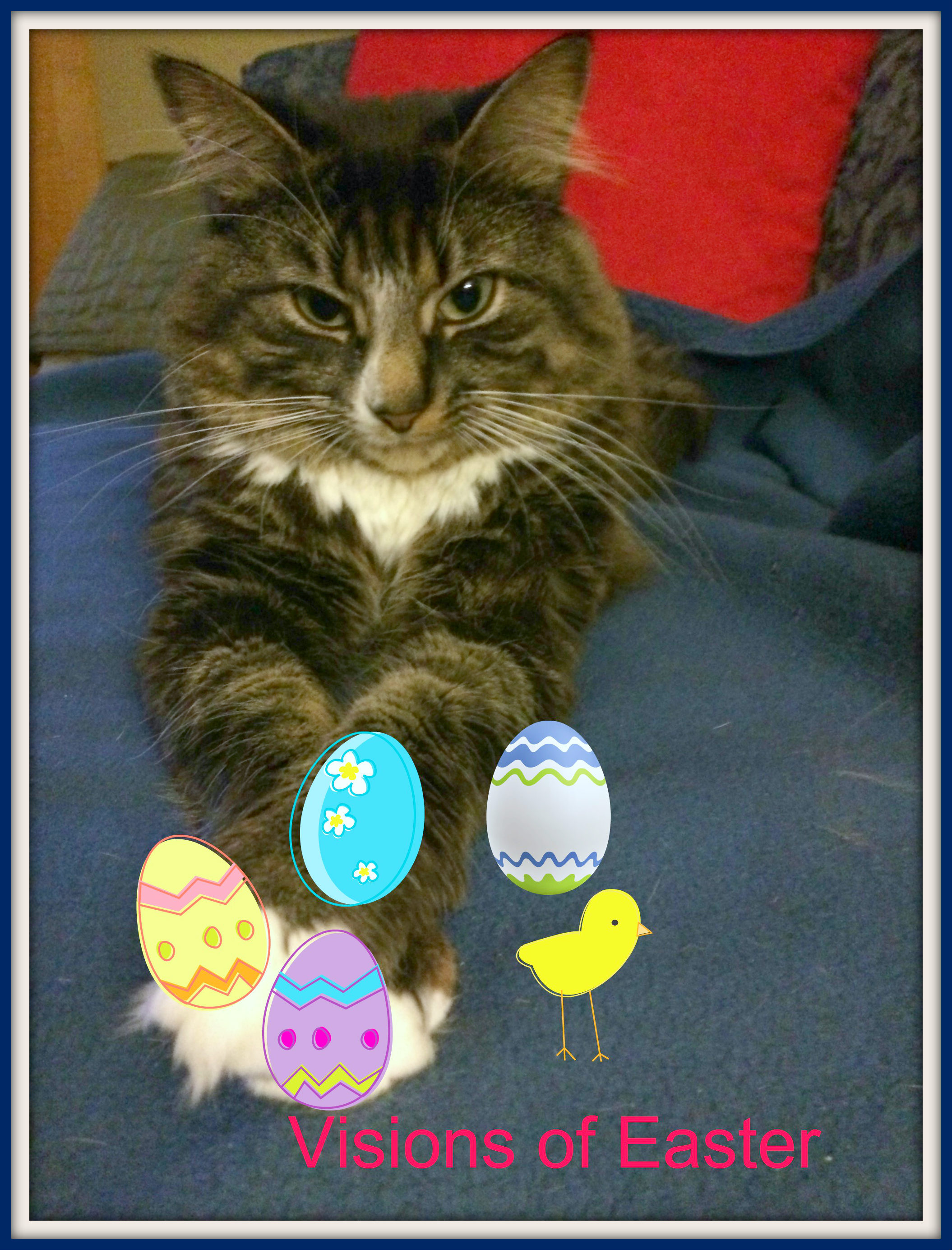 Cat and Easter