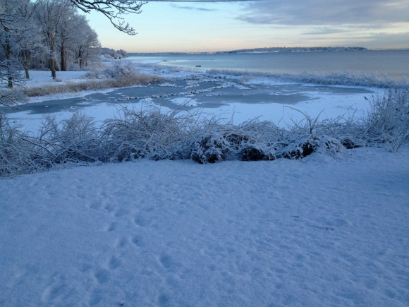Winter coastal RI real estate view