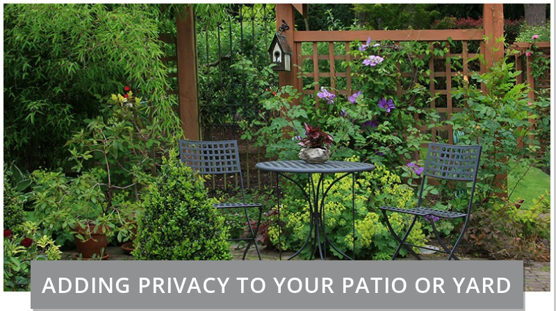 easy ways to add privacy to your patio or yard in austin texas