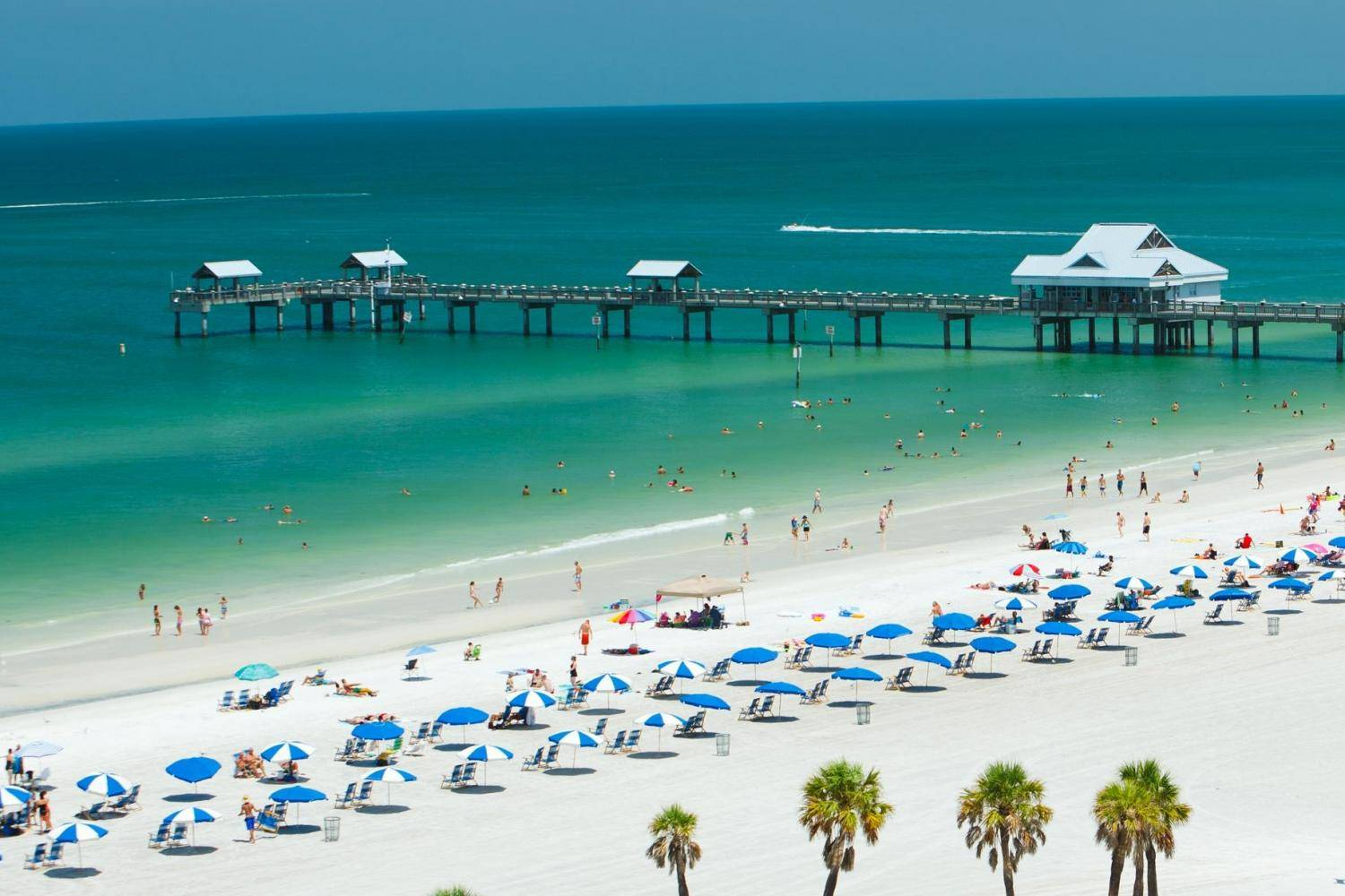 ocean city and clearwater beach essay