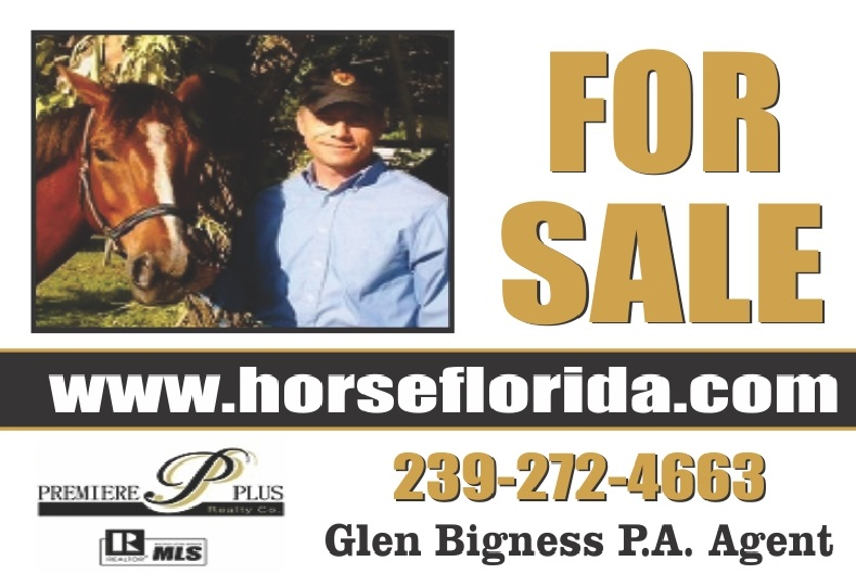 Horse Property For Sale In Naples Fl In Collier County