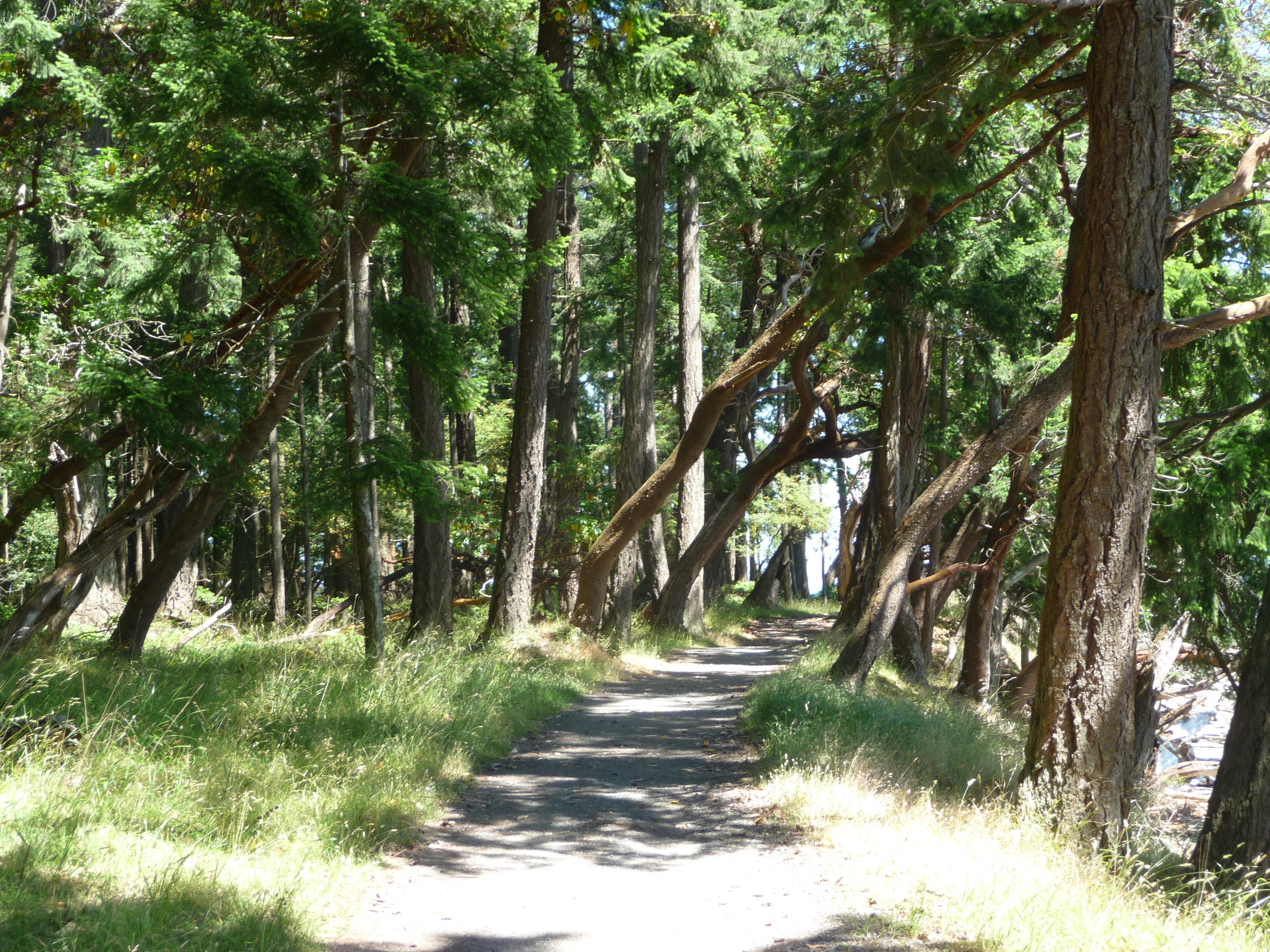 Newcastle Island walking trails