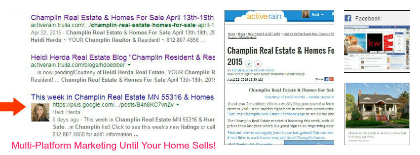 property marketing plan homes in champlin mn