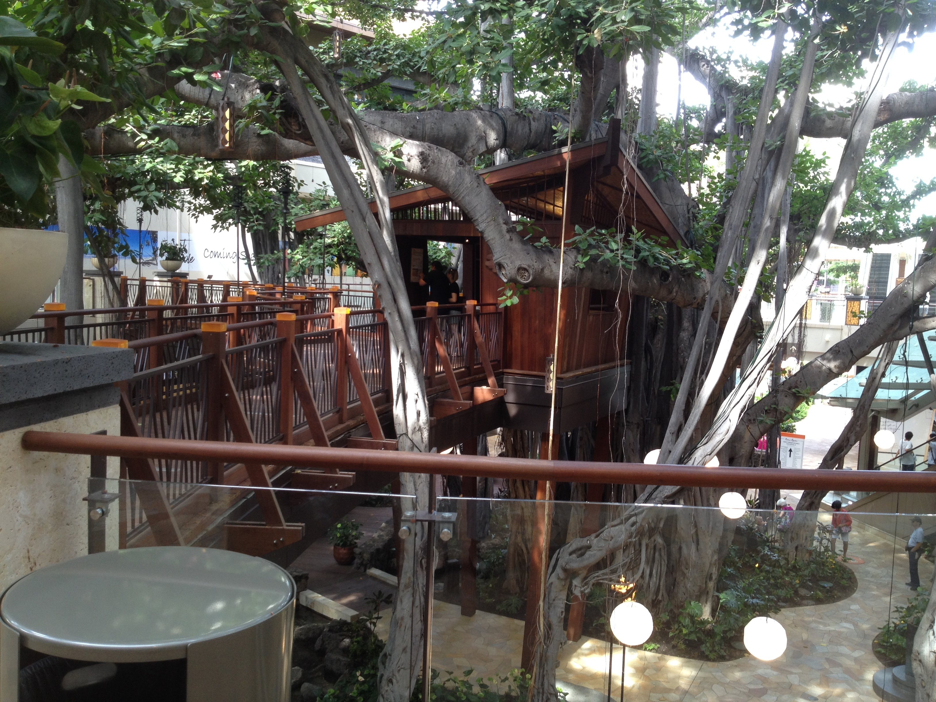 Don the Beachcomber's Treehouse in Banyan Tree at the International Market Place in Waikiki