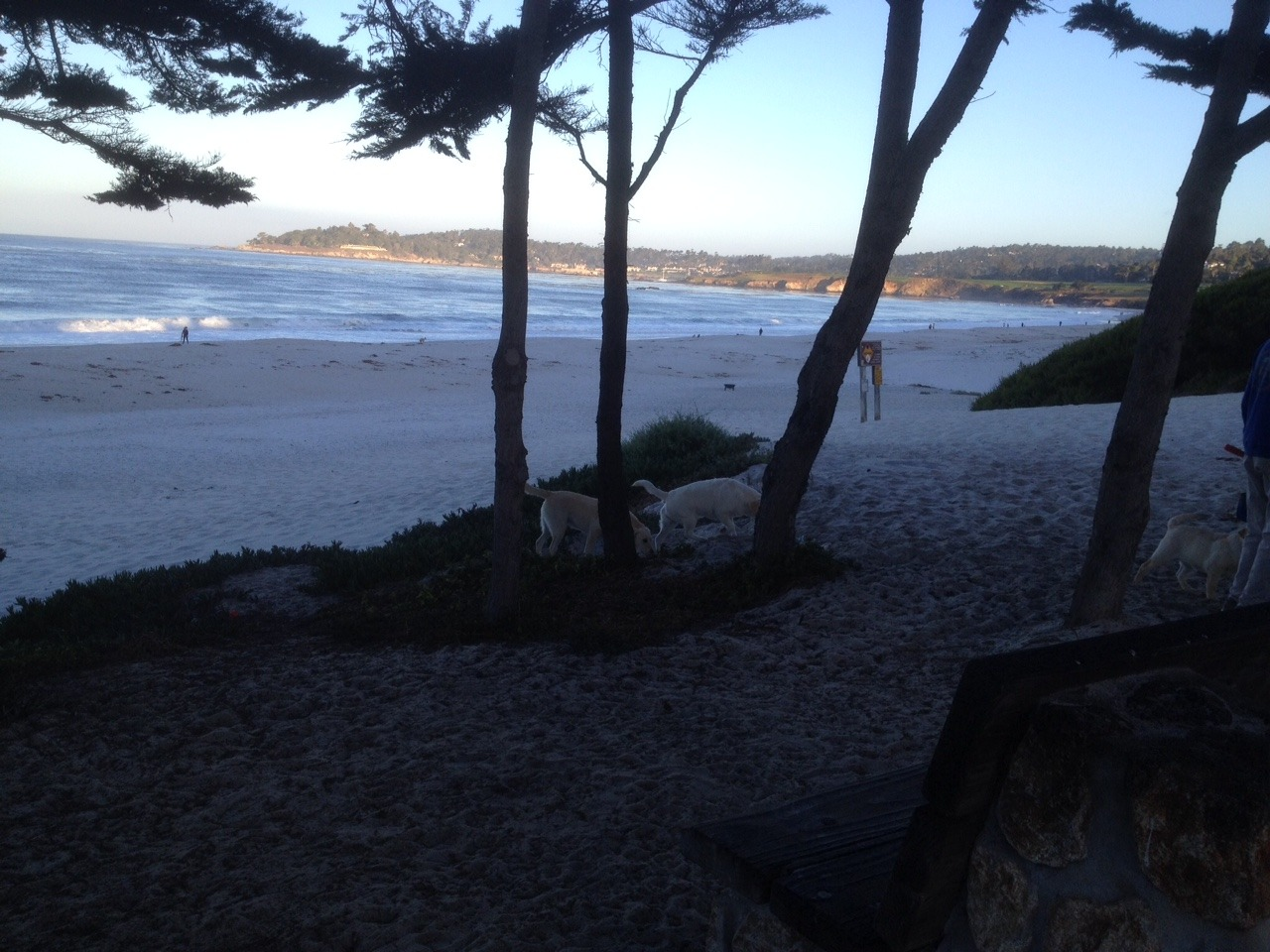 Carmel Beach Early in the morning