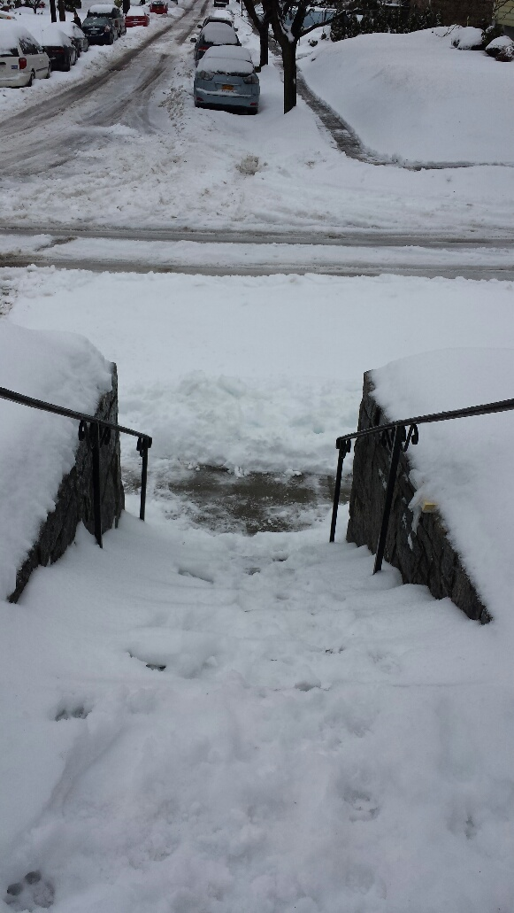 snow winter storm warning water damage basement flood wet lower level emergency westchester county 10583