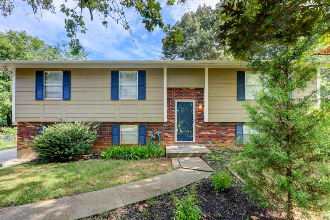 11113 Concord Woods Drive, Knoxville, TN