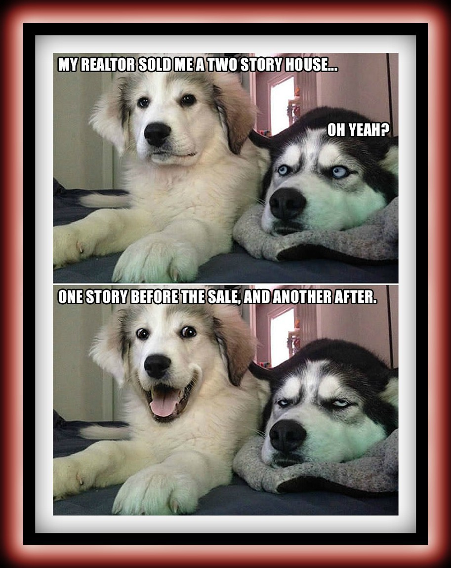 A Two Story House Real Estate humor