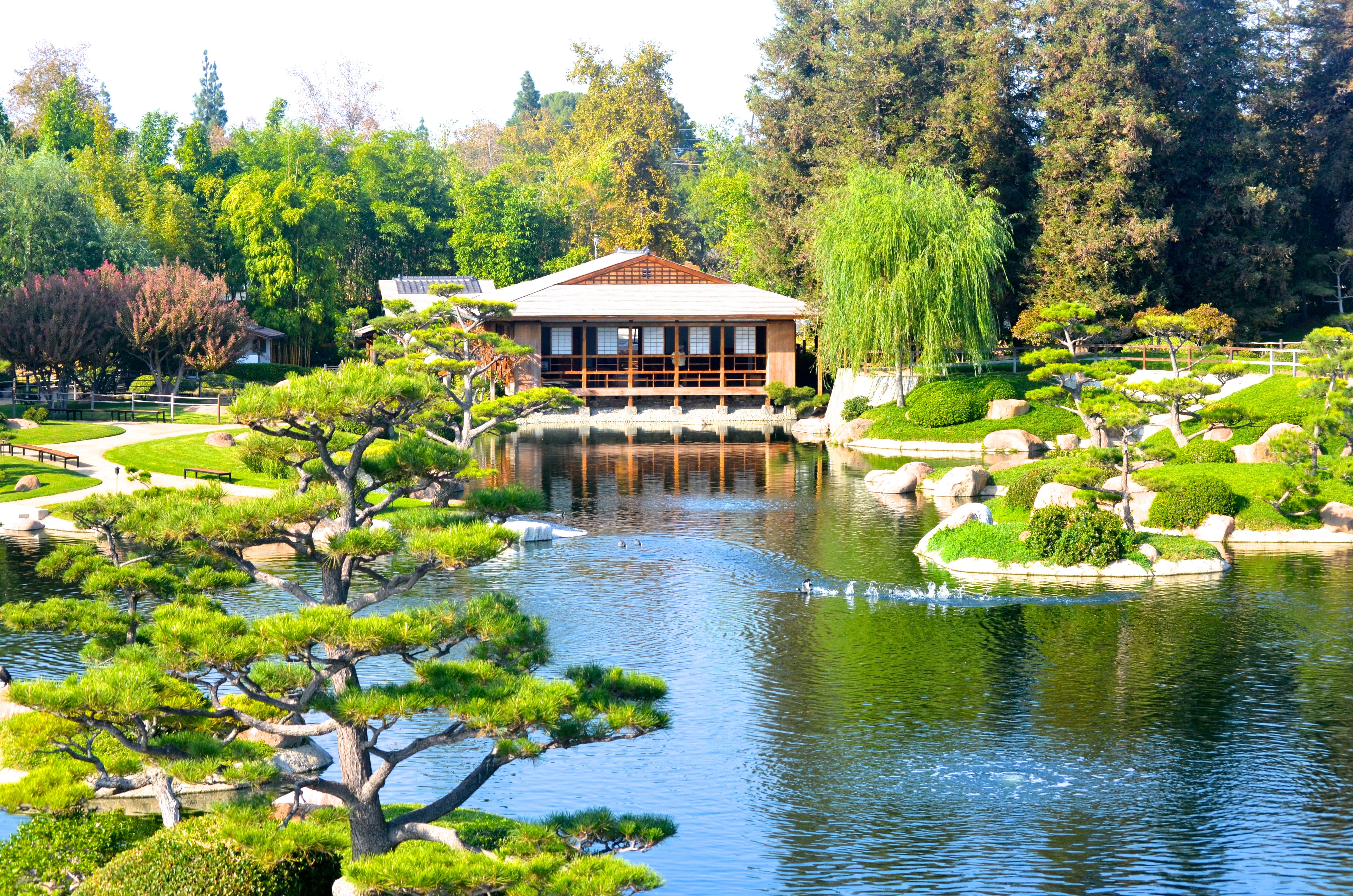 discover lake balboa the japanese garden suiho en 39