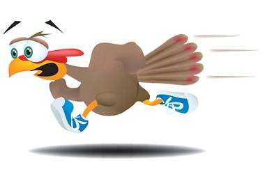 2014 long island turkey trot events