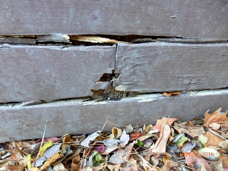 Is Your Siding Too Close To Ground Eco Paint Inc