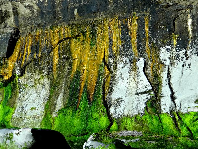 Colorful wall at Terramar Beach Carlsbad