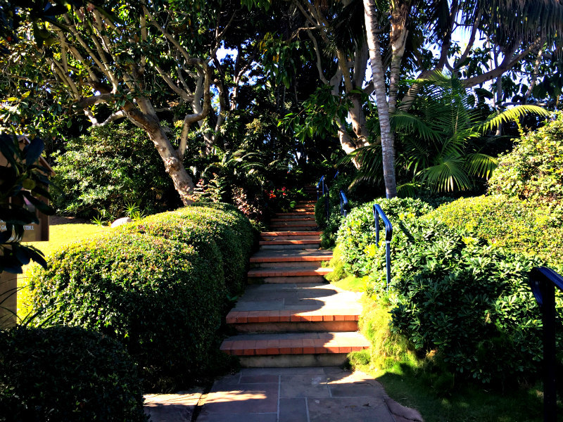 Steps leading to the gardens