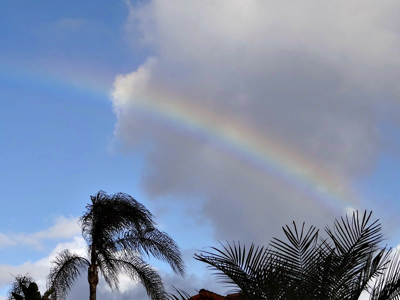 Rainbow in Carlsbad 11/21/2016