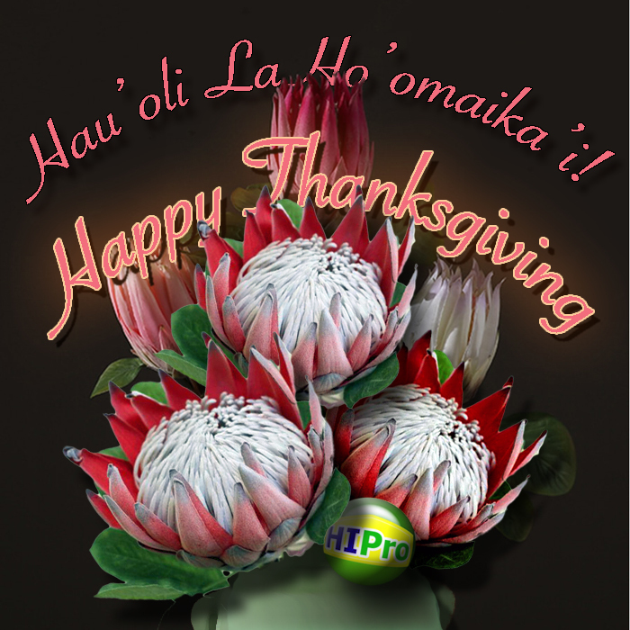 Happy Thanksgiving!  Hau'oli La Ho'omaika'i!