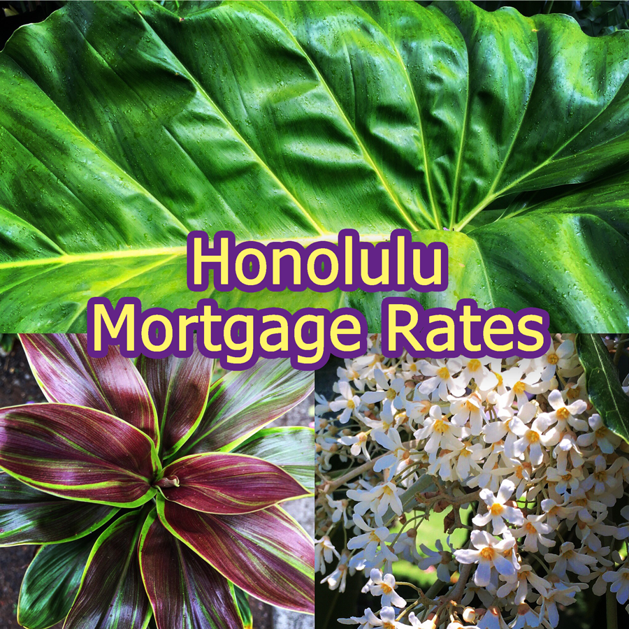 Honolulu Mortgage Rates as of January 31st 2016