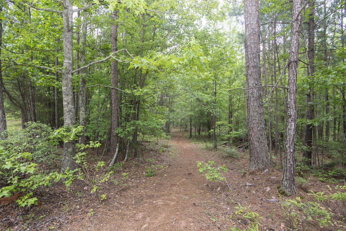 Hard Labor State Park trails