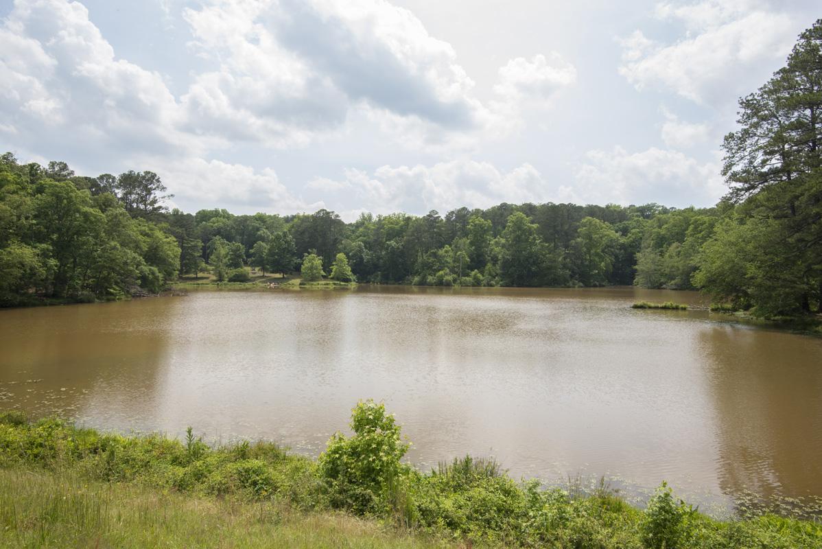 Hard Labor Creek State Park lake