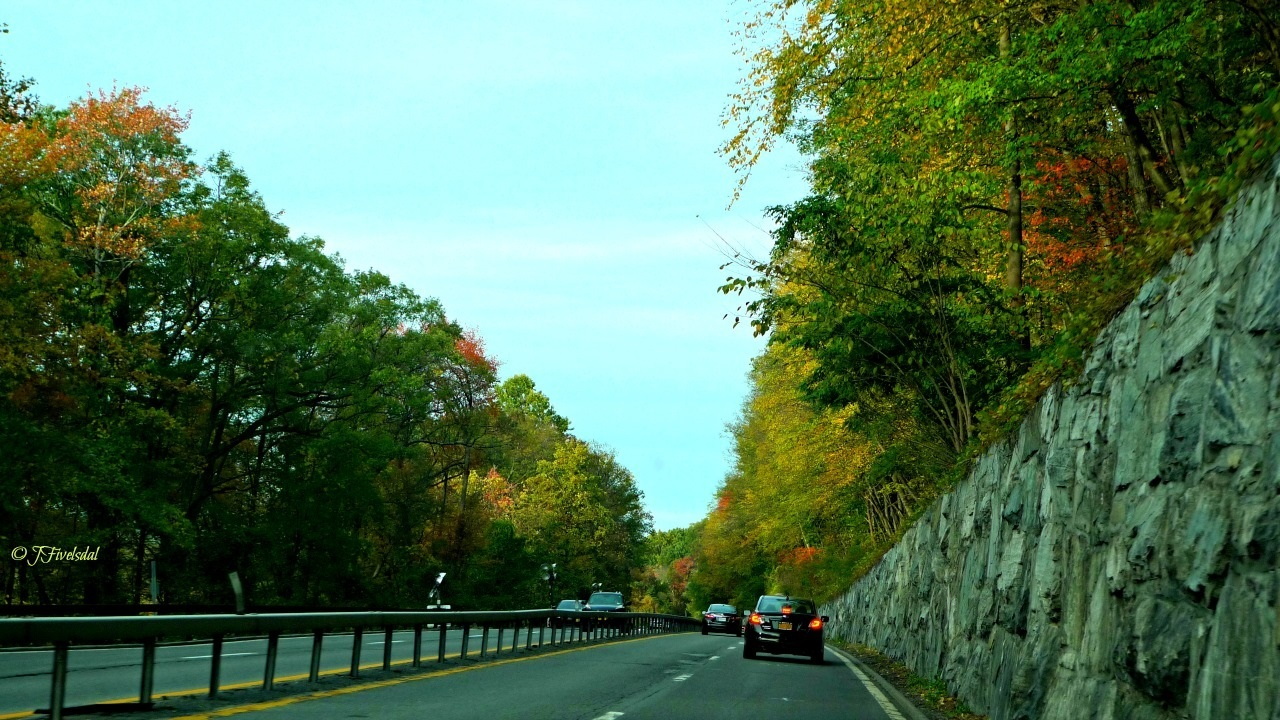 Scene on the Taconic State Parkway