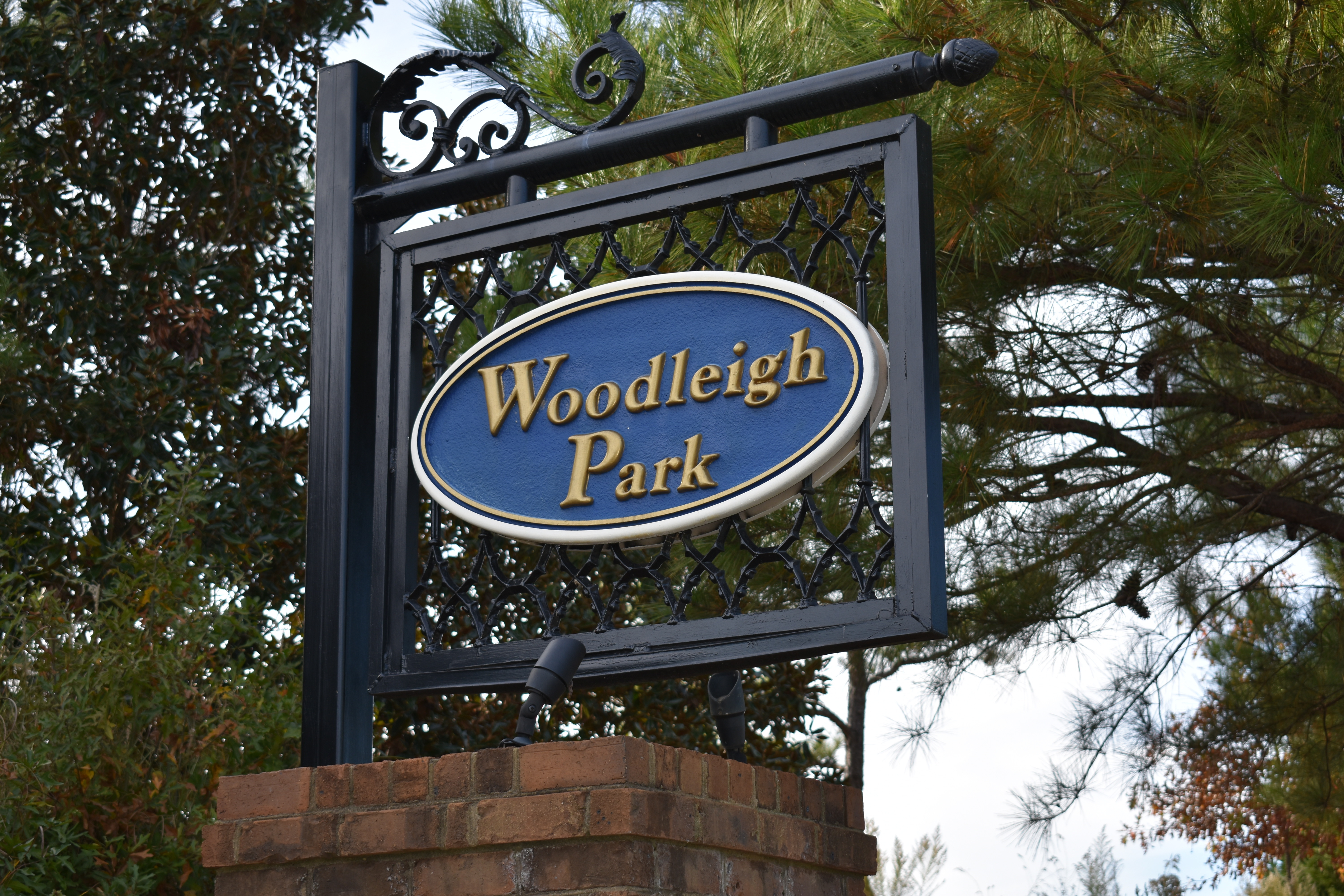 Homes for Sale in Lake Carolina Woodleigh Park