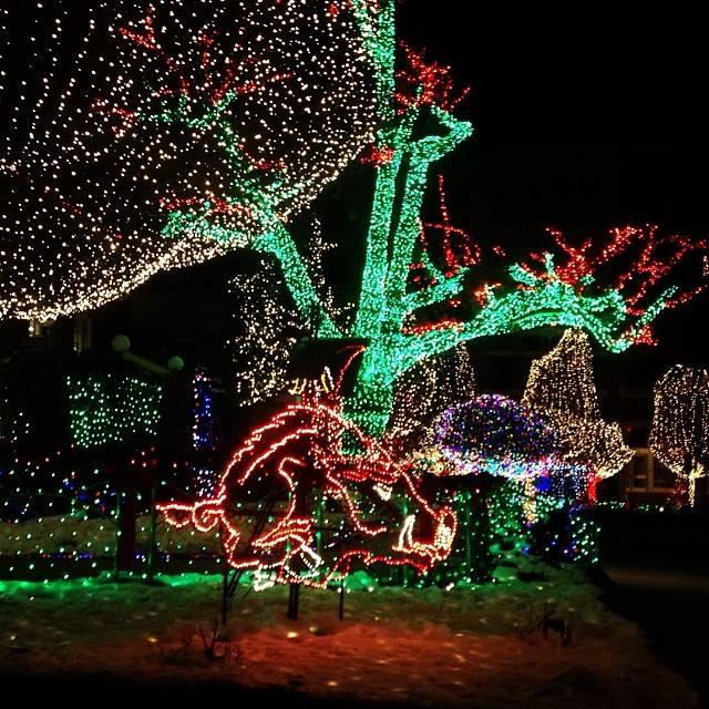 visit the fayetteville square to see the awesome christmas lights