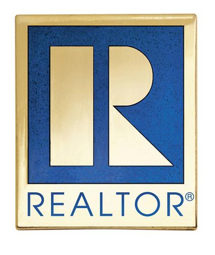 Professional Realtor