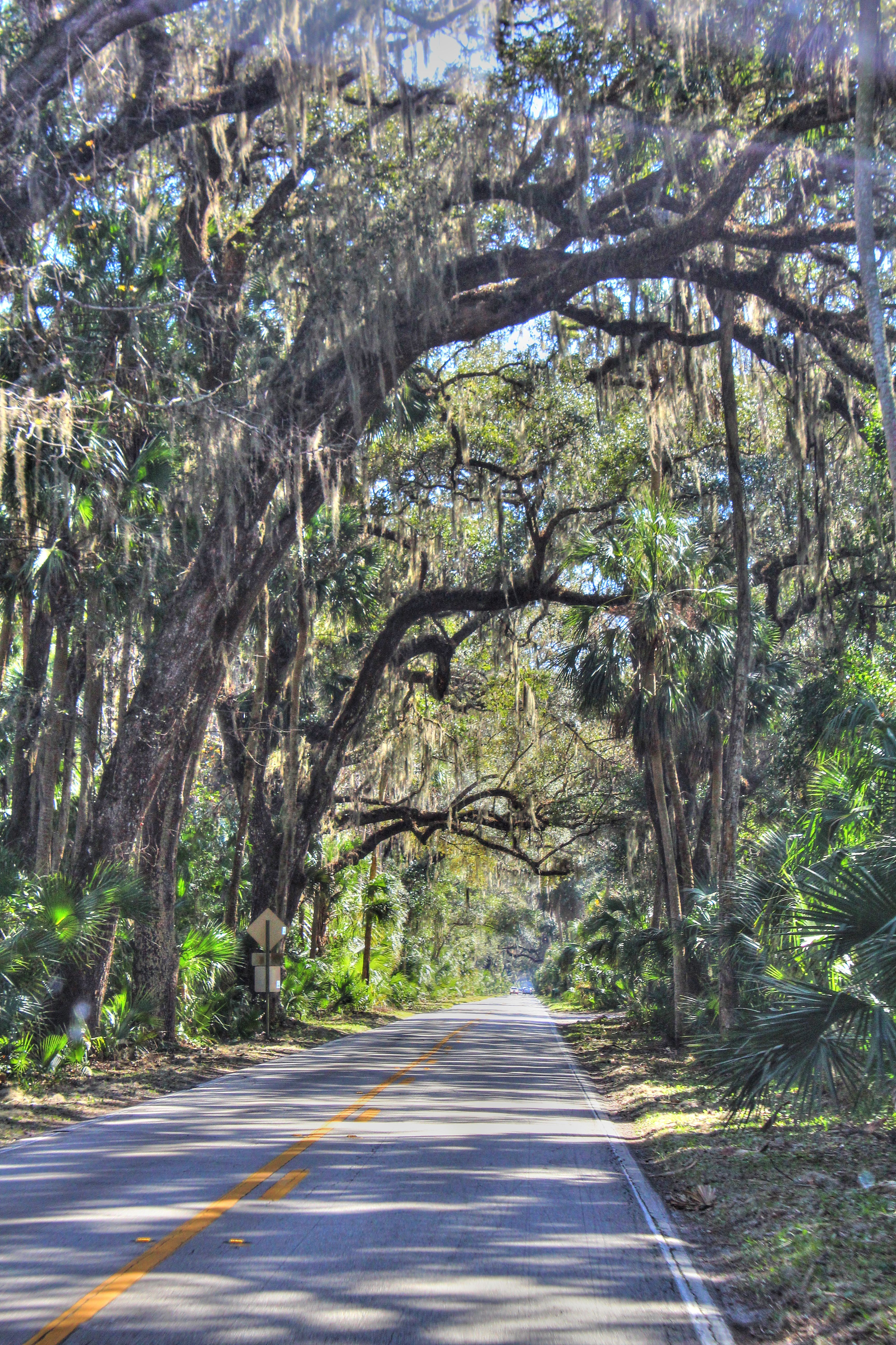 Ormond Beach Loop