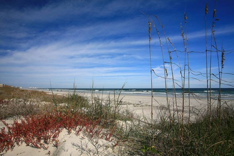 Ponce Inlet Beach by Joyce Marsh Homes