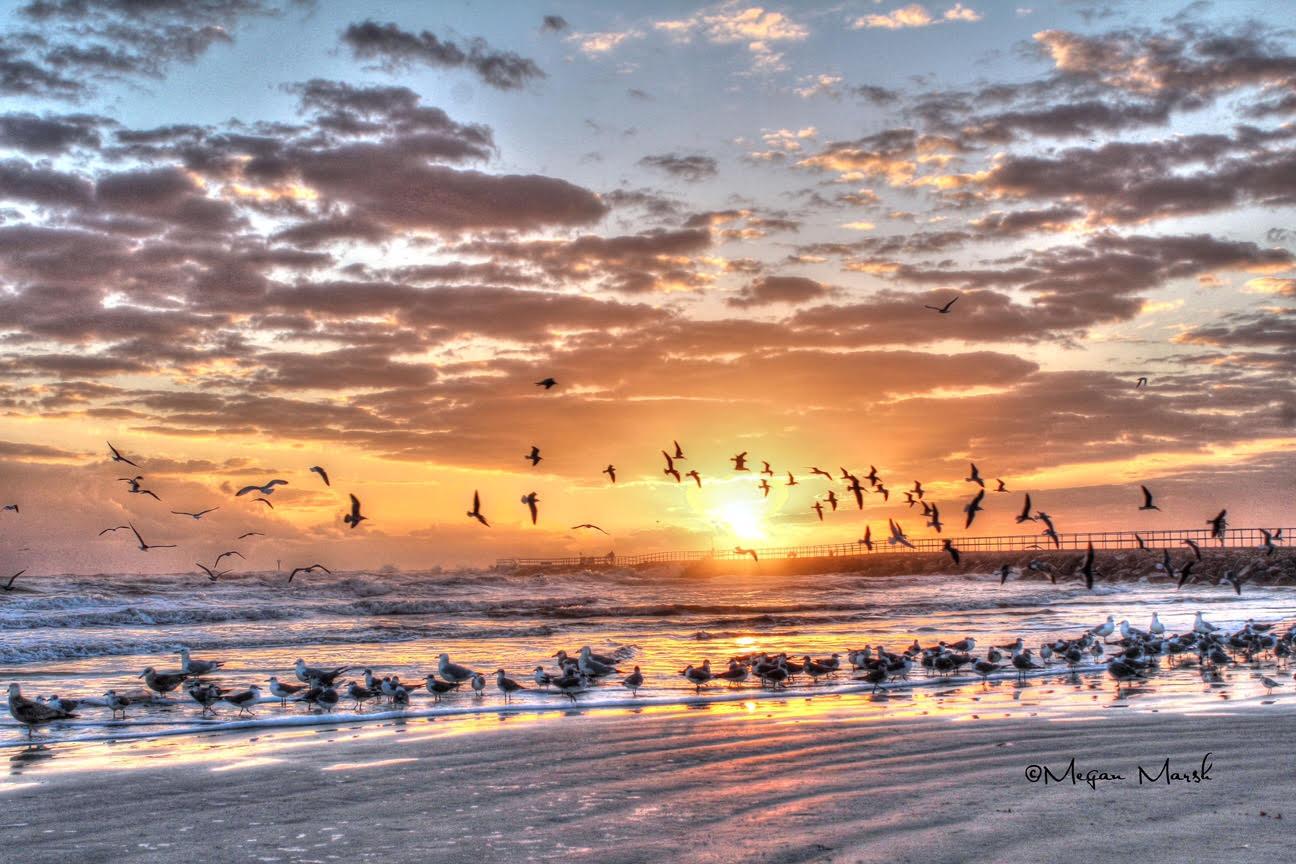 Sunrise Daytona Beach by Megan Marsh Photography Copyright