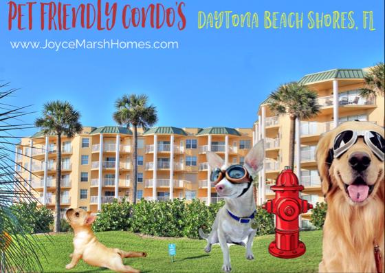 Pet Friendly Condos For Sale In Daytona Beach Shores By Joyce Marsh Real Estate