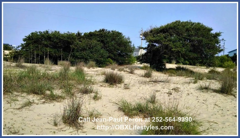 Build your dream home on this Swan Beach Outer Banks NC lot for sale and enjoy panoramic views of the ocean and the forest.